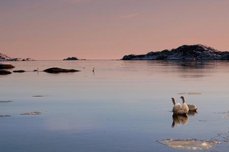 noruega-turistas.jpg